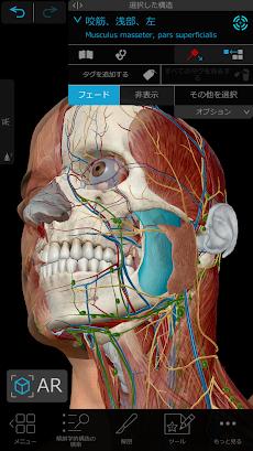 ヒューマン・アナトミー・アトラス2021: 3Dによる完璧な人体のおすすめ画像1