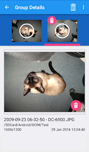 PicaDup: Find and get rid of similar images