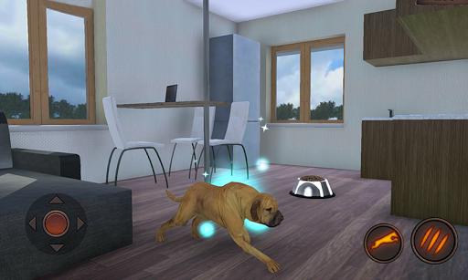 Fila Brasileiro Simulator 1.0.6 screenshots 7