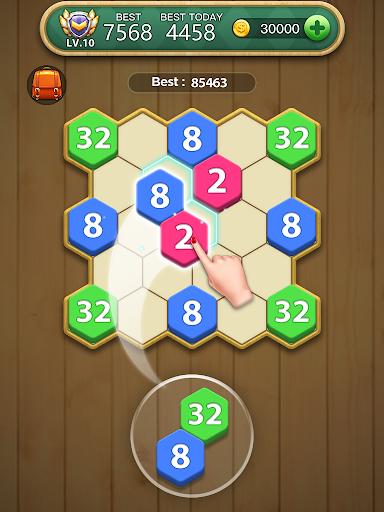Hexa Block Puzzle  screenshots 8