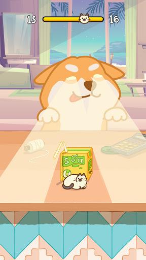 Kitten Hide Nu2019 Seek: Neko Seeking - Games For Cats  screenshots 3