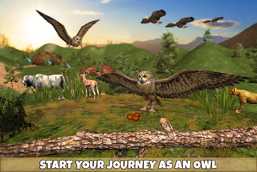 Wild Owl Bird Family Survival: Bird Simulator 3.0 screenshots 9