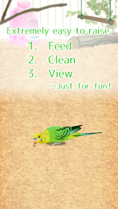 Parakeet Pet  Apps For Windows 7/8/10 Pc And Mac | Download & Setup 2