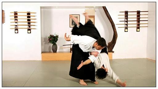 learn aikido and martial arts screenshot 1