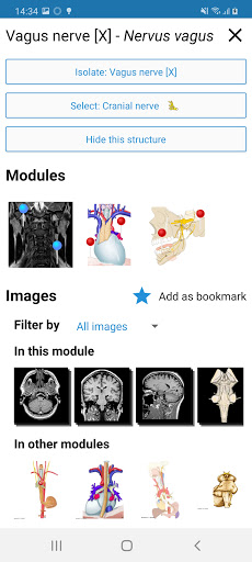 e-Anatomy 4.12.12 Screenshots 7
