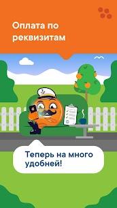 Apelsin Arvostelu 2
