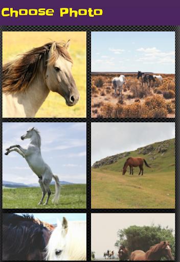 horse puzzle jigsaw for kids screenshot 1