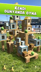 Angry Birds AR  Isle of Pigs Apk İndir 2