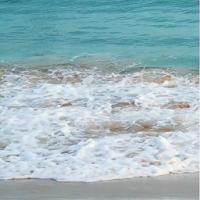Real Ocean Live Wallpaper PRO