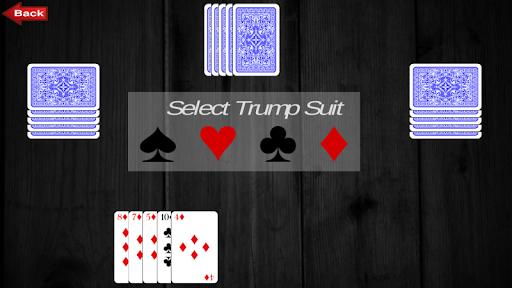 Rung Card Game : Court Piece screenshots 5