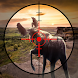 Deer Hunting Covert Sniper Hunter - Androidアプリ