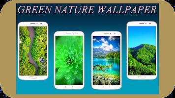 Green Nature Wallpaper