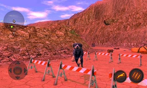 Rottweiler Dog Simulator  screenshots 8