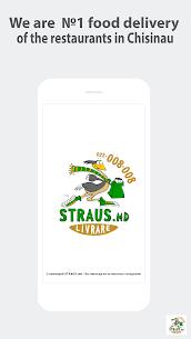 STRAUS 3.8.0 Mod + Data Download 1