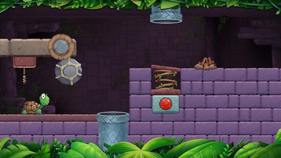 Turtle Puzzle: Brain Puzzle Games