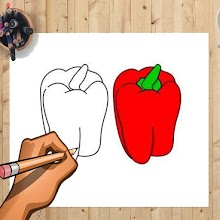 How to Draw Bell Pepper And Other Vegetables APK