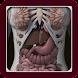 3D Female Anatomy: 3D Bones Skeleton & Organs - Androidアプリ
