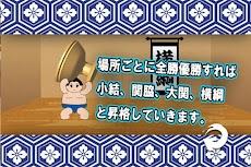 大相撲のおすすめ画像5
