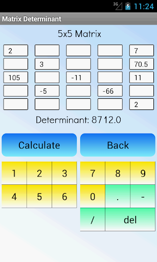 Matrix Determinant Calculator ss2