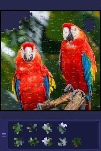 ColorPlanetu00ae Jigsaw Puzzle HD Classic Games Free apkpoly screenshots 8