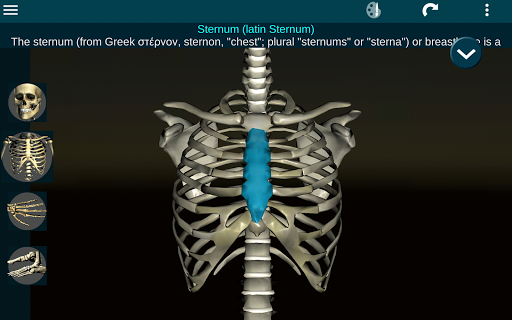 Osseous System in 3D (Anatomy) 2.0.3 Screenshots 10