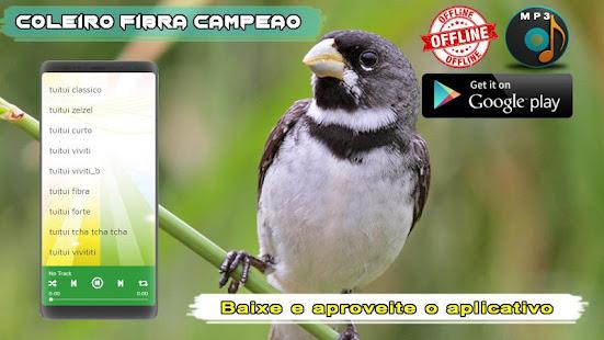 Coleiro Fibra Campeao 1.2 screenshots 4