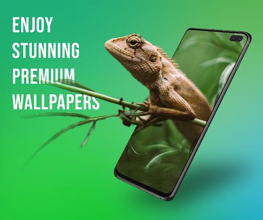 Video Wallpaper - Set your video as Live Wallpaper apktram screenshots 5