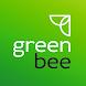 Greenbee кикшеринг