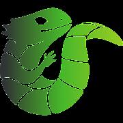 Midori Browser Lite: Light, Fast & Safe