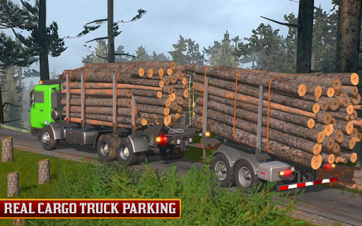 USA Truck Long Vehicle 2019 1.5 screenshots 4