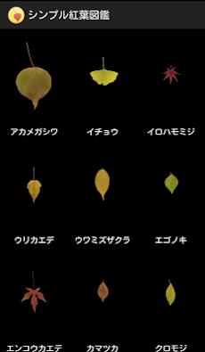 シンプル紅葉図鑑のおすすめ画像1