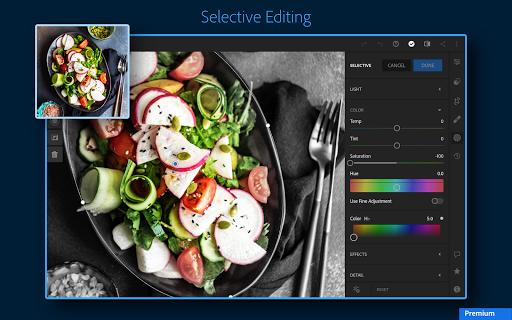 Adobe Lightroom - Photo Editor & Pro Camera 6.1.0 screenshots 15
