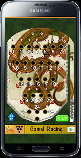 Bingo Pinball Dragon screenshots 1