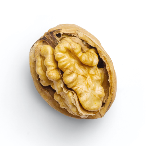 Nutrition Analyzer icon