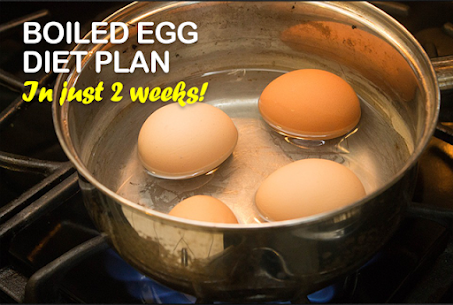 Boiled Egg Diet Secret For Pc   How To Download For Free(Windows And Mac) 2