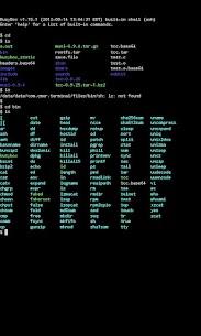 APK Linux 3