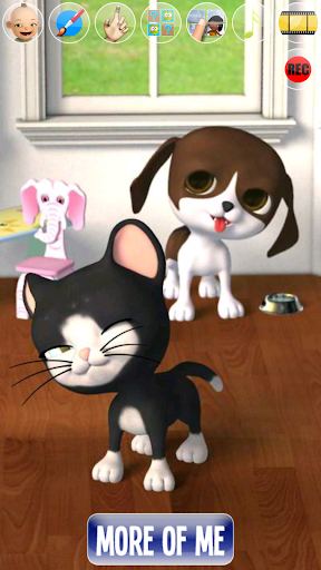 Talking Stars Cat & Dog & Pets  screenshots 4