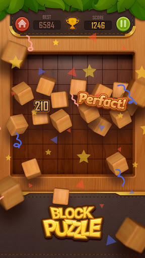 Wood Block Puzzle - 3D 3.0 screenshots 3