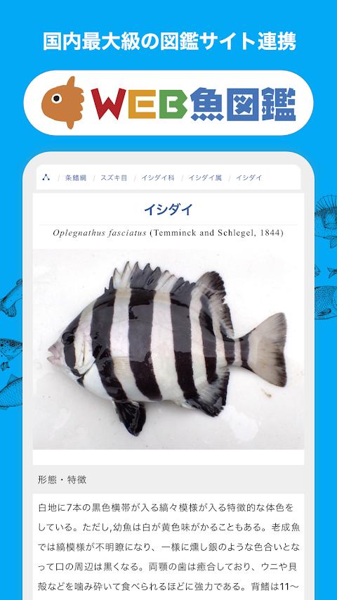 魚みっけのおすすめ画像4