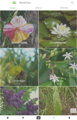 PlantNet Plant Identification 3.3.24 Screenshots 11