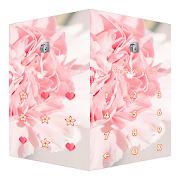 AppLock Theme Carnation