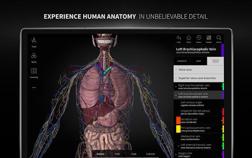 Anatomyka - 3D Human Anatomy Atlas 2.1.5 Screenshots 9