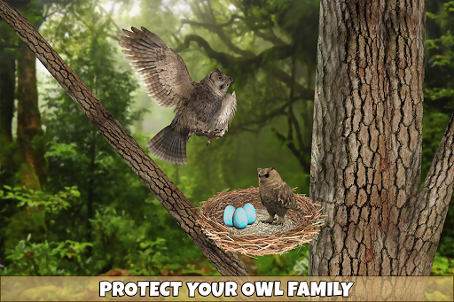 Wild Owl Bird Family Survival: Bird Simulator 3.0 screenshots 7