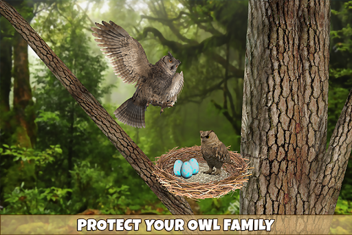 Wild Owl Bird Family Survival: Bird Simulator 3.0 screenshots 3