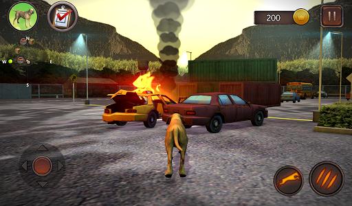 Fila Brasileiro Simulator 1.0.6 screenshots 10