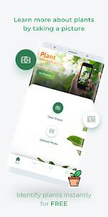 LeafSnap – Plant Identification 2