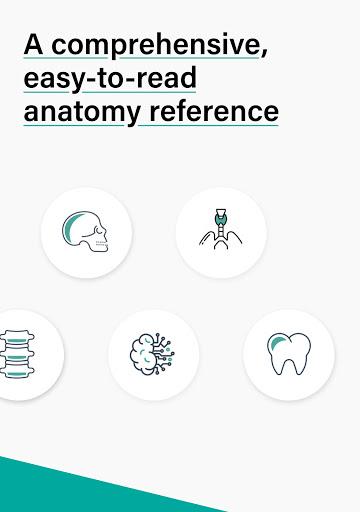 Teach Me Anatomy: 3D Human Body & Clinical Quizzes  Screenshots 11