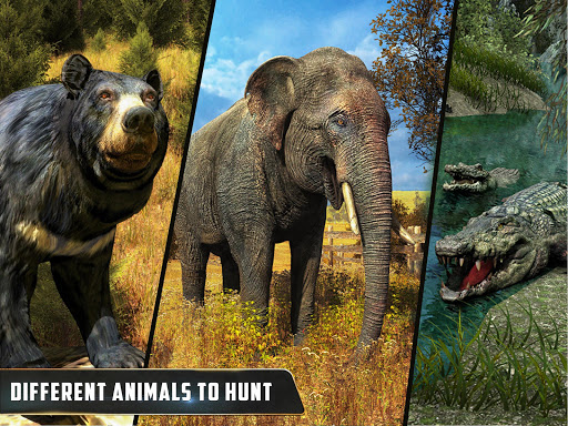 Wild Animal Hunting : Jungle Sniper FPS Shooting 1.11 screenshots 11
