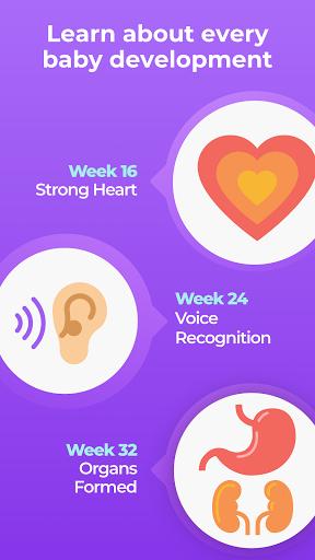 Pregnancy Tracker & Baby App apktram screenshots 5