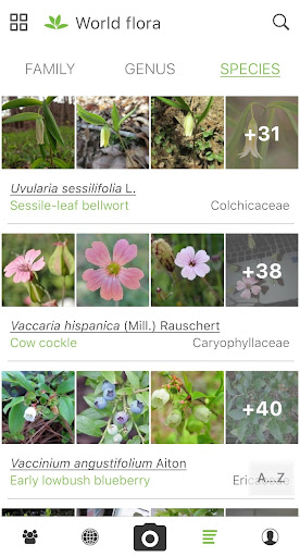 PlantNet Plant Identification 3.3.24 Screenshots 4